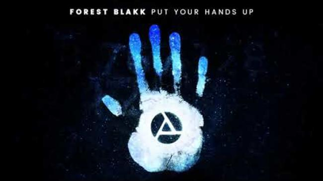 Forest Blakk - Put Your Hands Up [Official Audio]