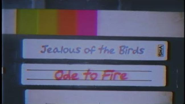 Jealous of the Birds - Ode To Fire [Official Lyric Video]