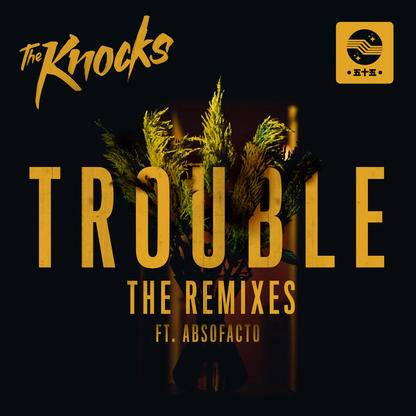 The Knocks - TROUBLE (The Remixes)
